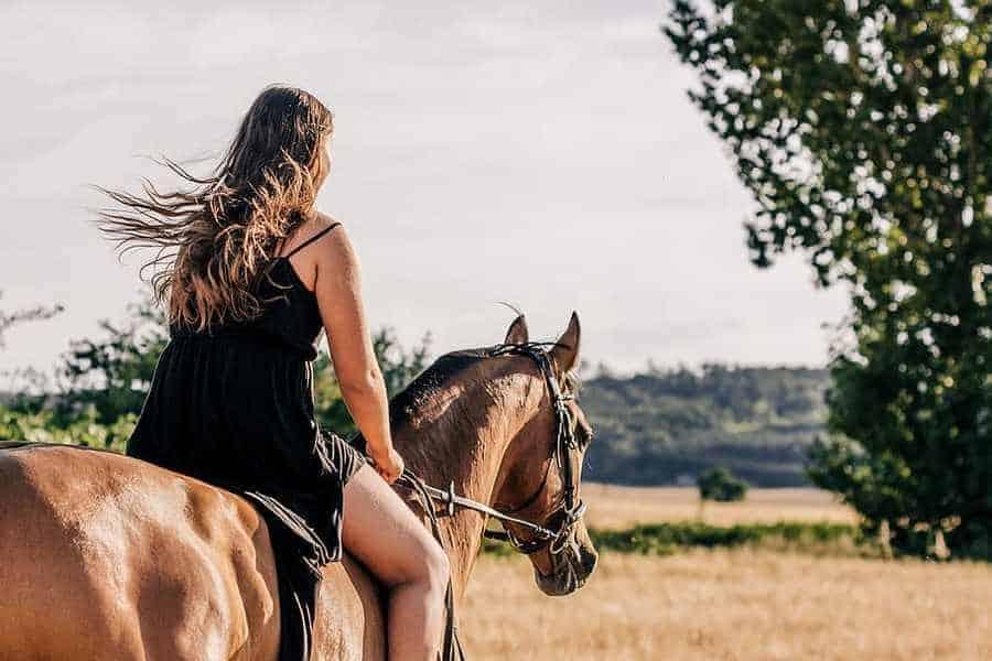 horse-girl-ride-trot