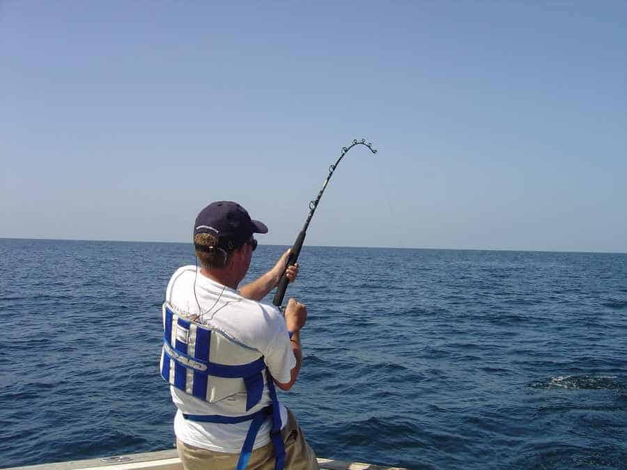Ally Jay Fishing