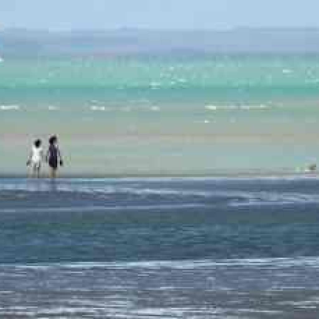 Pialba Beachfront