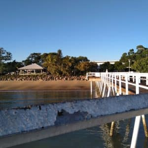 Tours in & around Hervey Bay