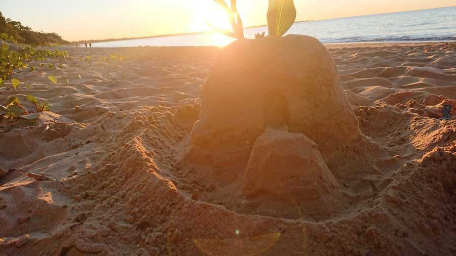 Sandcastle Ideas For Beginners