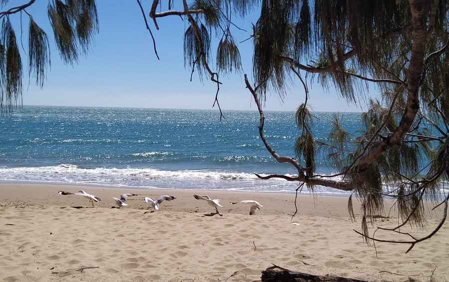 Is Hervey Bay A Good Holiday Destination?