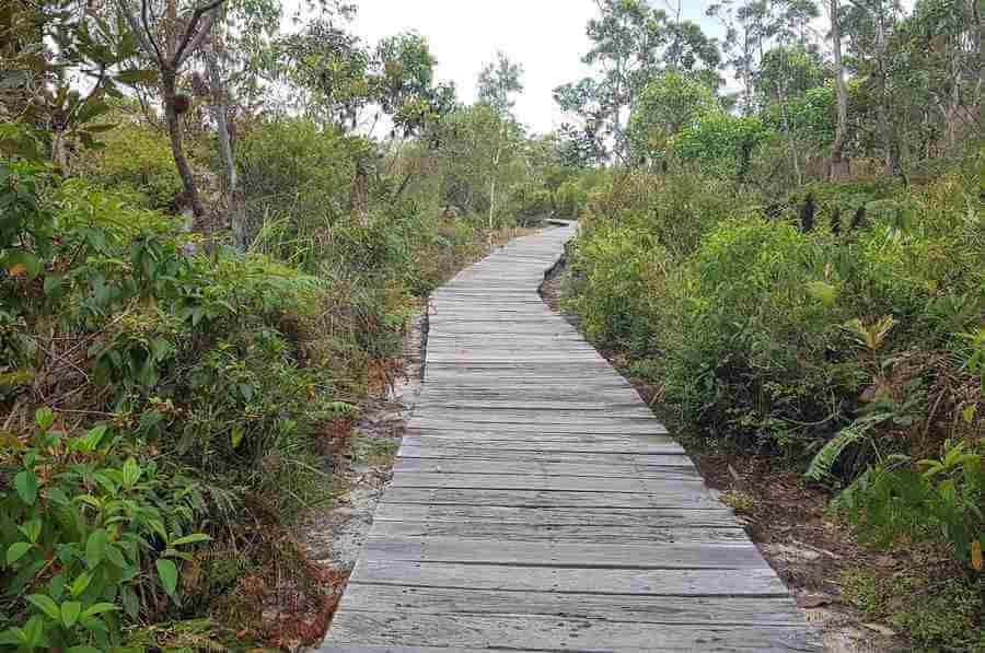 Walking Trails Kingfisher Bay